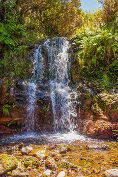 Wasserfall auf Madeira von Arie Jan van Termeij