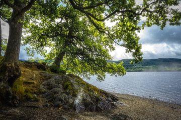 Loch Venachar, Schotland van