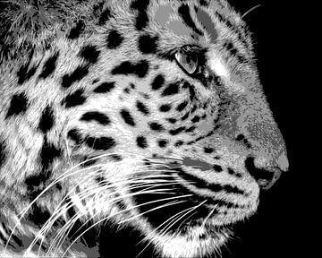 Panter in zwart-wit