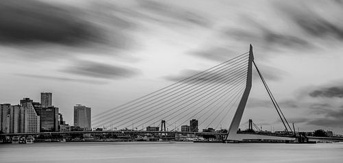 Skyline van Rotterdam in zwart-wit