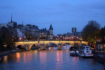 Brug in Parijs van Anouk Davidse