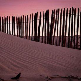 Dune sur Bas Rutgers