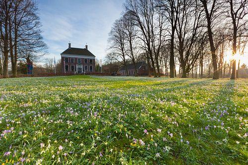 Spring at the Ennemaborg Estate