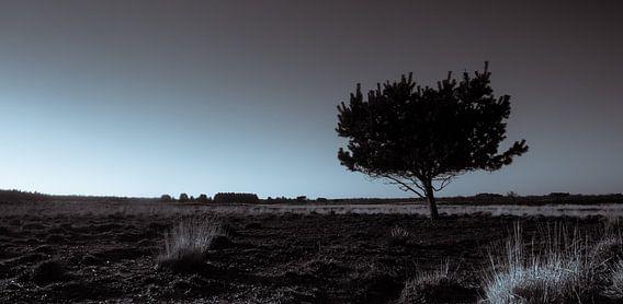 Groote Heide 4