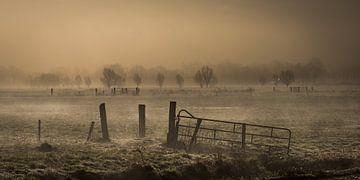 Mist over de weilanden  von Jenco van Zalk