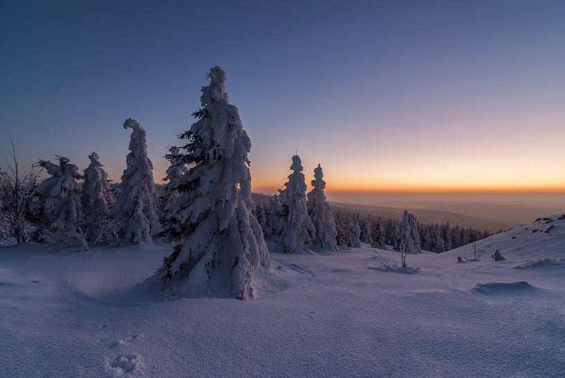 Winter Evening van Patrice von Collani