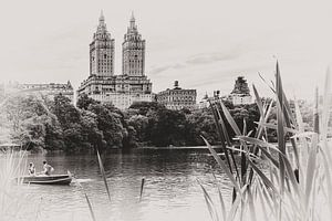 Central Park New York van Greet Thijs