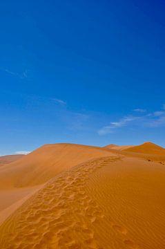 Zandduinen van Myrthe Visser-Wind