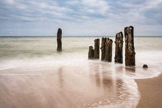 Groynes on the Baltic Sea coast van Rico Ködder