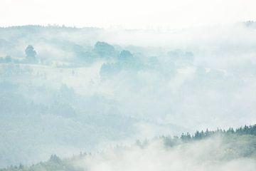 Landschaften im Nebel von Danny Slijfer Natuurfotografie