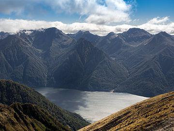 Neuseeland - Te Anau - Der See in den Tiefen des Fiordland National Park von Rik Pijnenburg