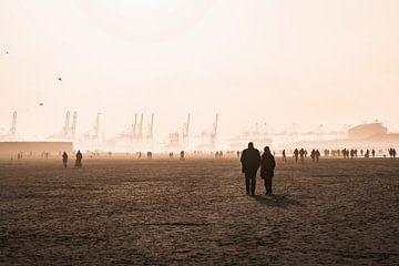 Strandliebe von Marcel Kool