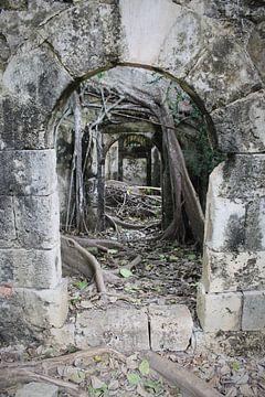 Petit-Canal Prison Ruine van