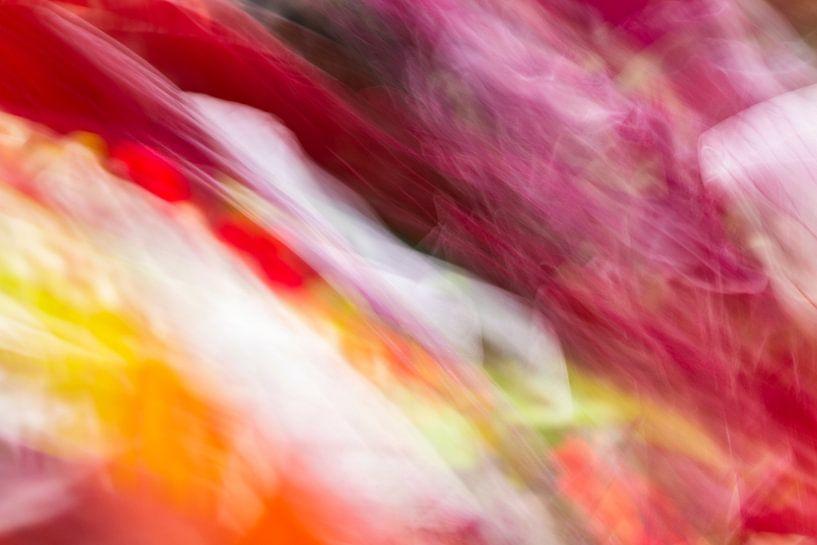 Colourful Leaves van Marion Raaijmakers
