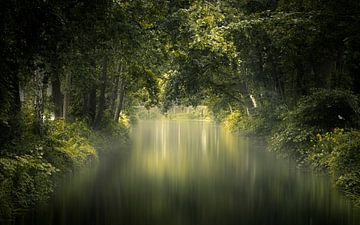 Summer Soft van Kees van Dongen