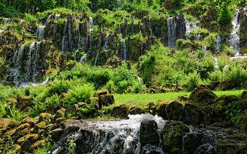 Steinhoefer Waterfall in the Mountain Park Wilhelmshoehe van Gisela Scheffbuch