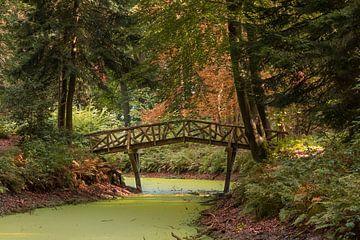 Bruggetje in het bos van Marga Vroom