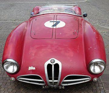Alfa Romeo barchetta von Michel van Vliet