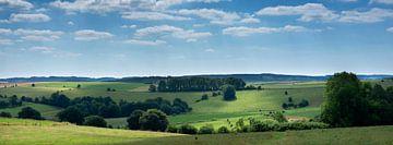 Landschaft mit Kühen in den belgischen Ardennen bei Stavelot und Troisponts. von anton havelaar