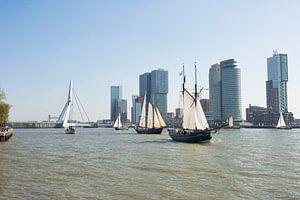 Historische Zeilschepen in Rotterdam