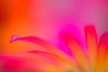 Flower Art   von Jessica Berendsen