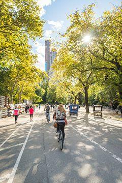 Sunny Central Park à vélo sur Bas de Glopper