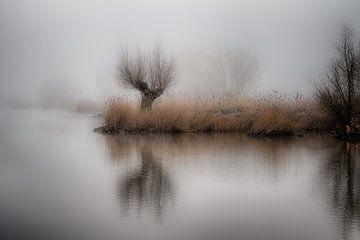 Mistig IJssellandschap bij Kampen, Nederland van Jos Reimering