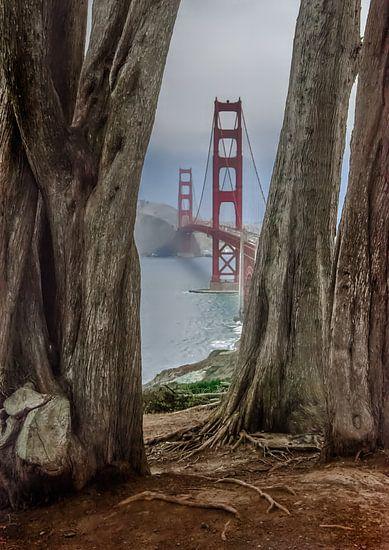 Golden Gate Bridge van Patrick Boening