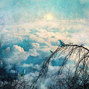 HEAVENLY BIRDS III-B4 von Pia Schneider