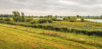 Panorama van het natuurgebied Tiendgorzen van Ruud Morijn