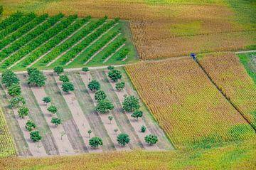 Uitzicht van boven op kleurrijke velden van Fartifos