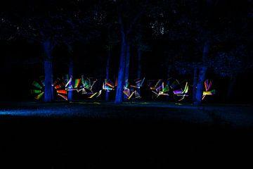 Nocturnal Rainbows in the forest  Three van Licht! Fotografie