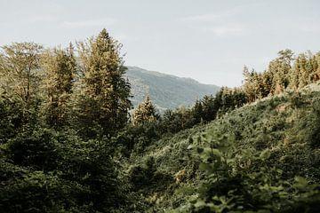 Foto van het uitzicht op een berglandschap nabij Mondsee | Salzburg, Oostenrijk van Trix Leeflang