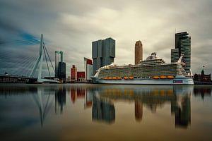 Harmony of the Seas ( Rotterdam )