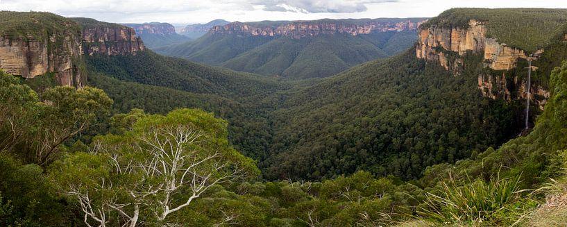 Blue Mountains Panorama, NSW Australie van Chris van Kan