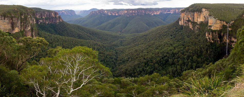 Blue Mountains Panorama, NSW Australie