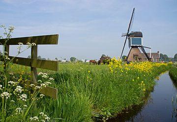 Zoeterwoude Rijndijk Molen von Miranda Bos