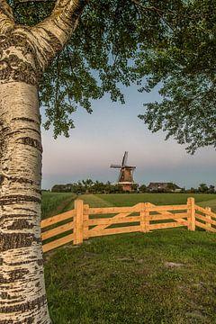 De molen van Paesens/Moddergat in het avondlicht van Harrie Muis