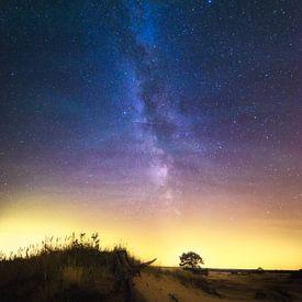 Melkweg Veluwe Nederland van Albert Dros