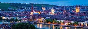 Würzburg Panorama van Martin Wasilewski