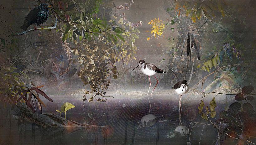Water Reflection van Jesper Krijgsman