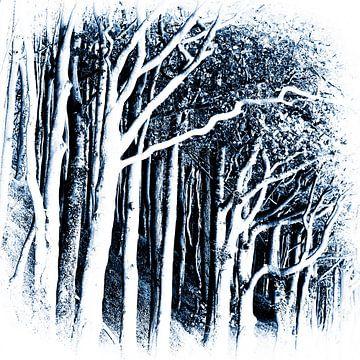 Küstenwald II von Kirsten Warner