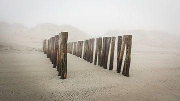 Paalhoofden op het strand aan de Zeeuwse kust in de mist van Michel Seelen