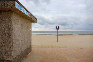 Ster der Zee aan het strand van Johan Vanbockryck