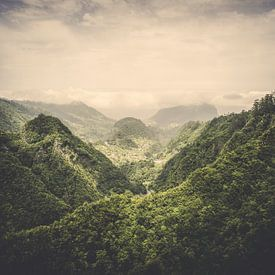 The Valley van Pascal Deckarm
