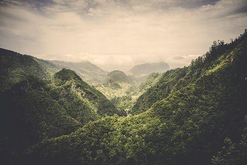The Valley von Pascal Deckarm