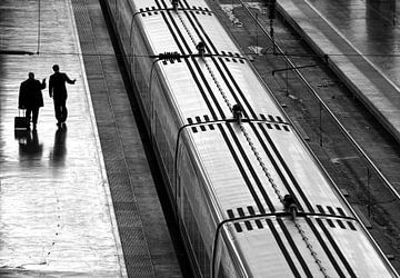 Railwaystation sur Marcel van Balken