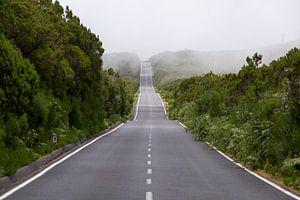Een weg doorkruist het heuvellandschap van Madeira van