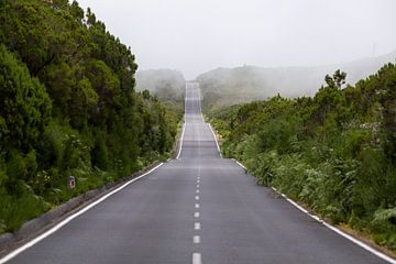Eine Straße kreuzt die Hügel von Madeira von Paul Wendels