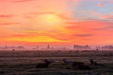 Mistige en kleurrijke zonsopkomst van Stephan Neven